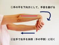 前腕伸筋群ストレッチ